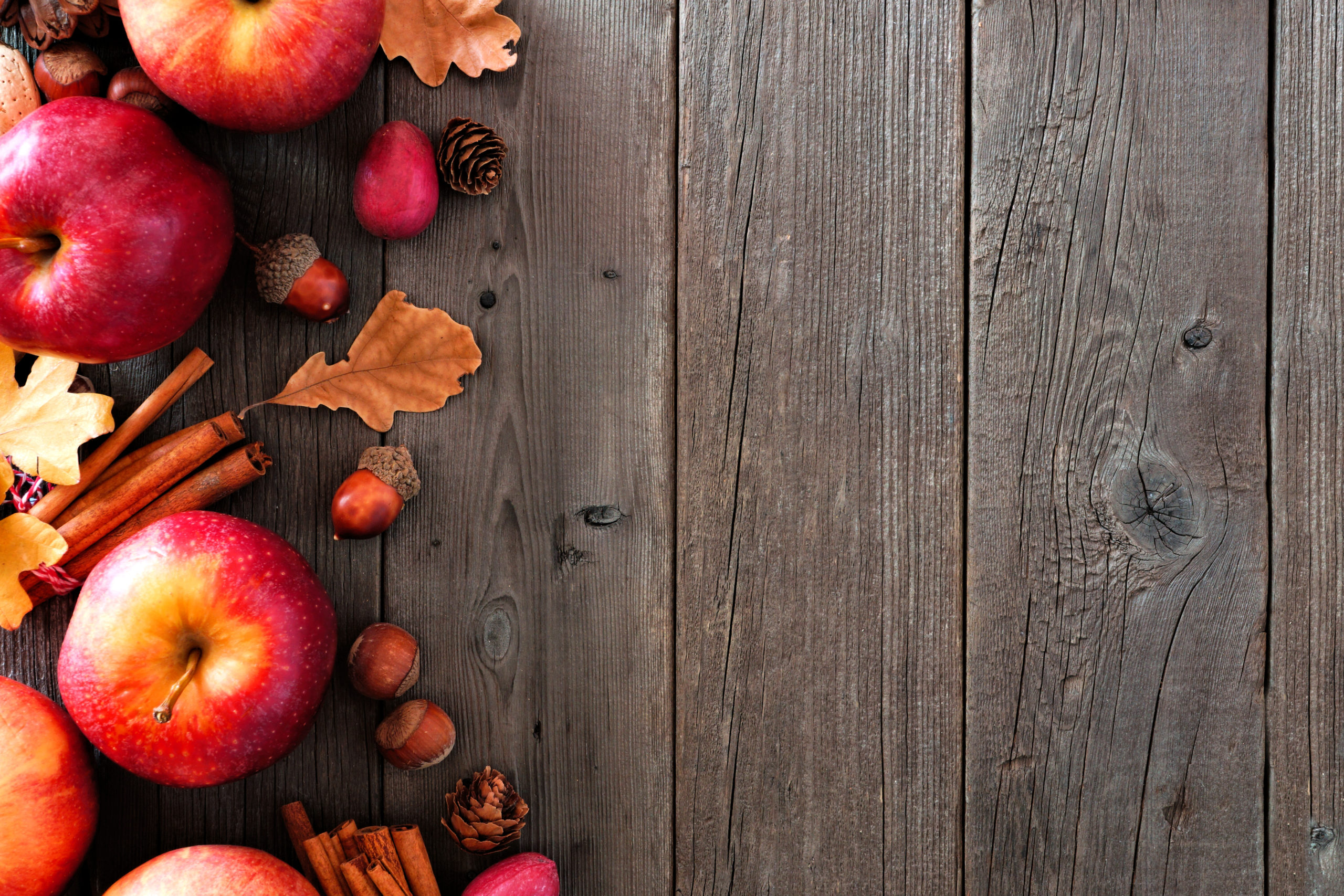 Autumn side border of apples and fall ingredients on a rustic wood background with copy space