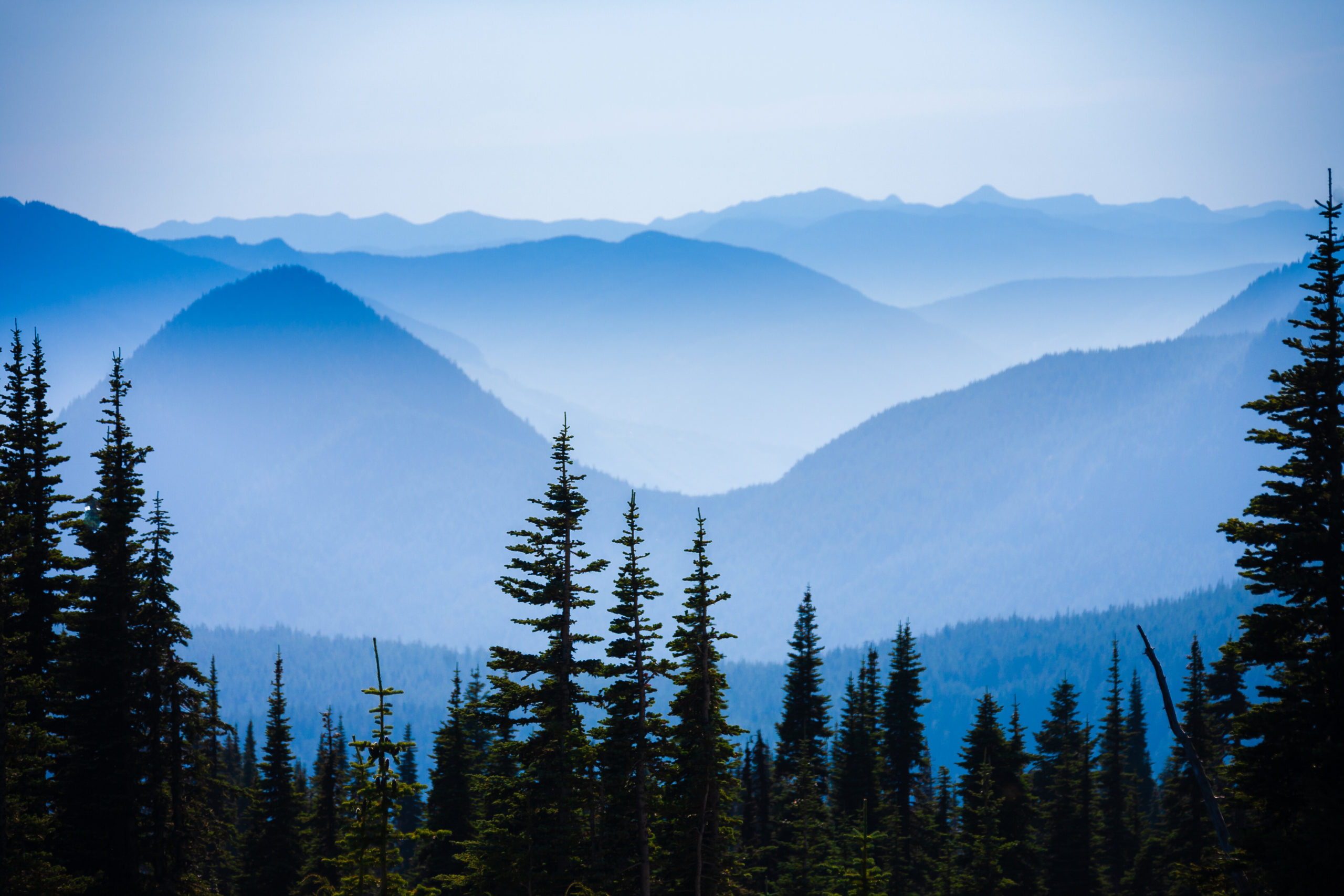 Hazy scenic view of mountain ranges in Mt. Rainier National Park.