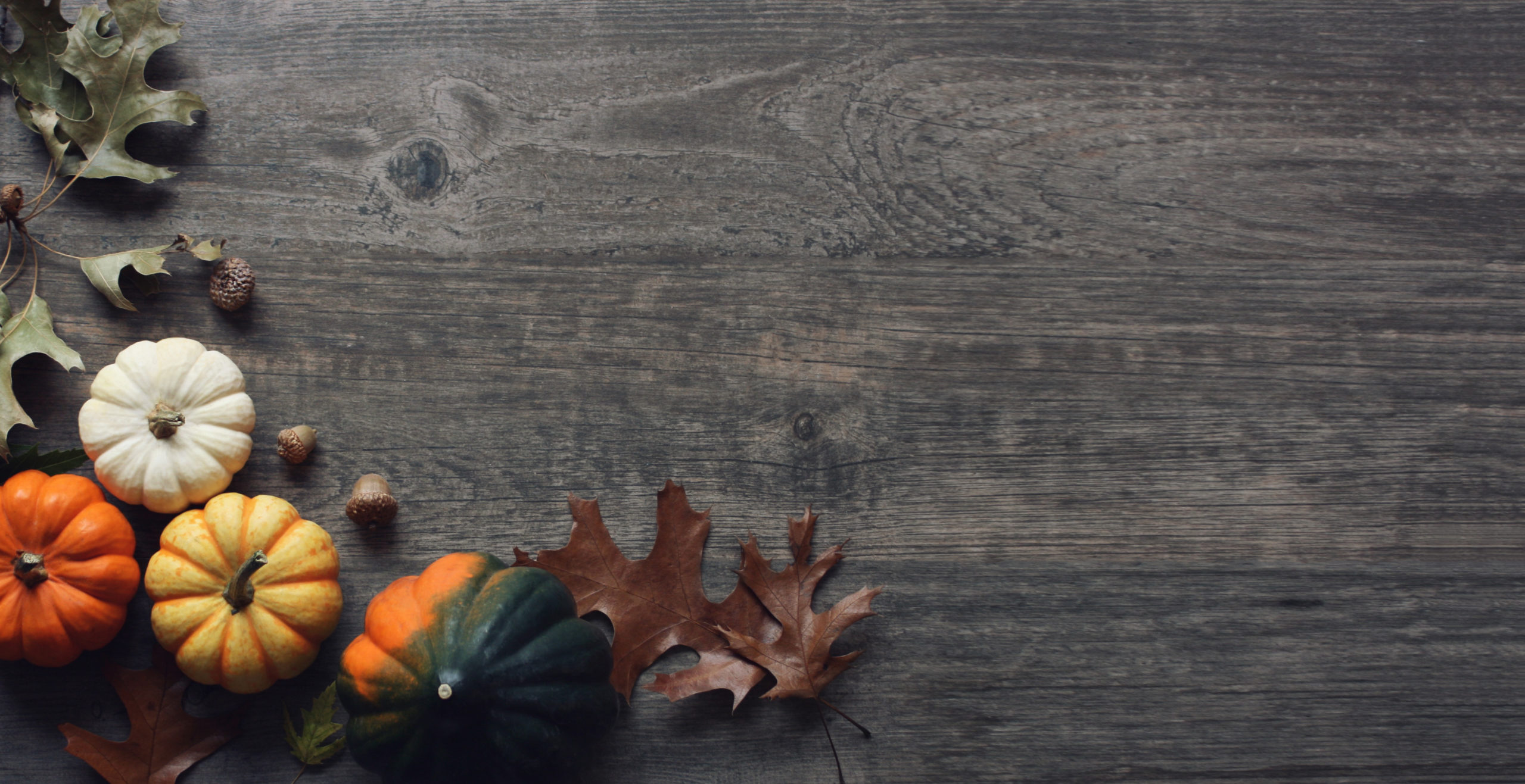 Thanksgiving Holiday Rustic Pumpkins and Leaves Over Wood Background, Copy Space